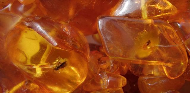 На складе под Калининградом нашли янтарь на 87 миллионов евро