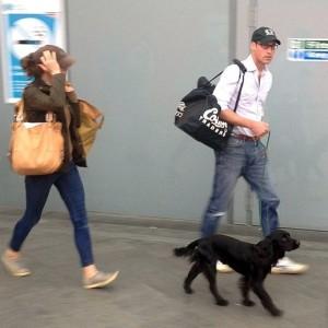 Не по-королевски: Кейт Миддлтон и Принц Уильям путешествуют без охраны (Фото)