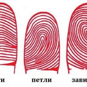 Что отпечатки ваших пальцев расскажут о вашем характере