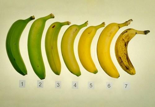 banan-696x479