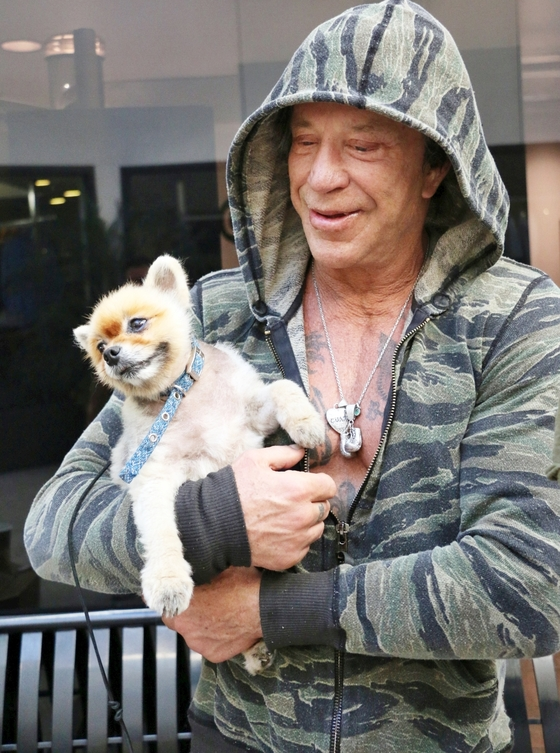 Mickey Rourke out with his pet dog in Beverly Hills